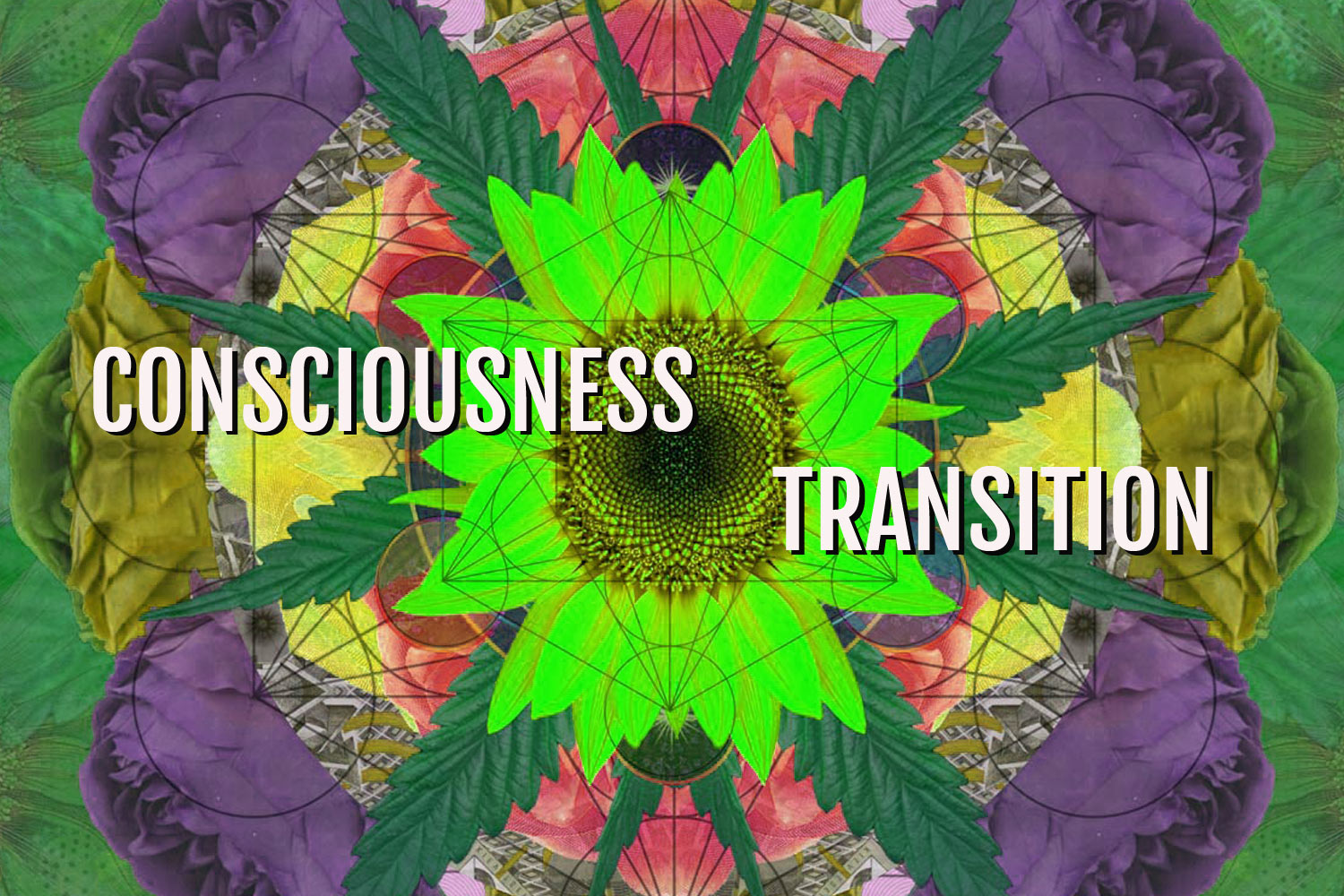 DIGITAL ART AMSTERDAM - Year review CONSCIOUSNESS TRANSITION
