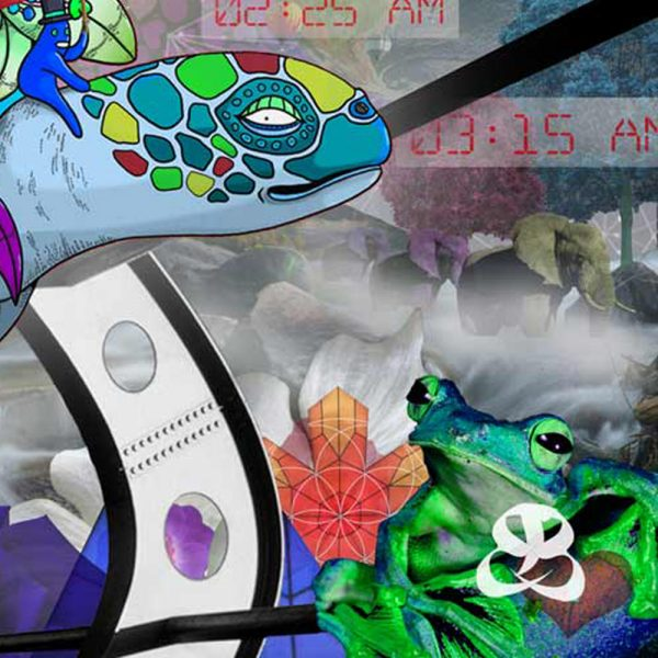 Detail of TIME TURTLE 2.0